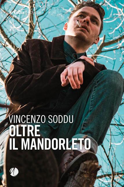Clicca sulla cover per acquistare il libro di Vincenzo Soddu